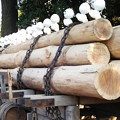写真: スノーギースマンの行列