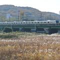 Photos: 南武線/多摩川橋梁