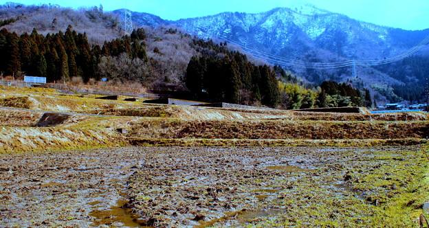 春三月に日野山にせまる