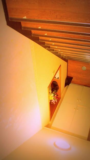 転落への階段