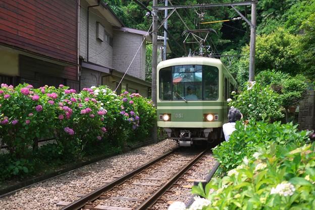 写真: 2012.06.06 鎌倉 御霊神社