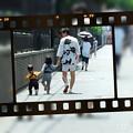 写真: 2016.06.09 arrows M02 PIP Camera お祭り