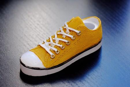 2017.01.21 隣町100均 散歩土産の靴