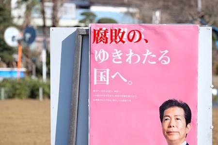 2017.01.28 追分市民の森 畑に選挙看板