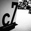 c7 Lake Biwa Museum