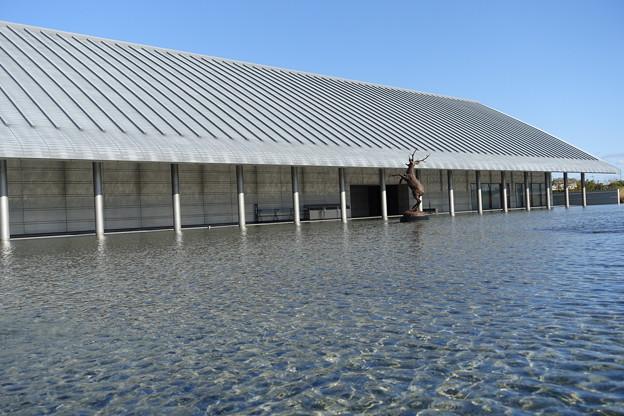水に浮かぶ美術館