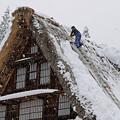 写真: 雪下ろし 五箇山