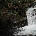 Photos: えび滝
