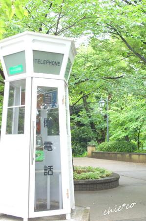 横浜山手-281
