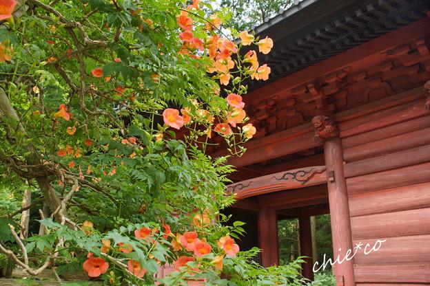 鎌倉-214