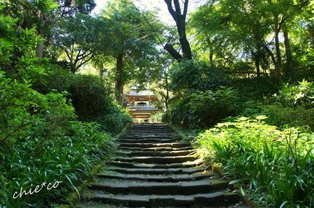 北鎌倉-351