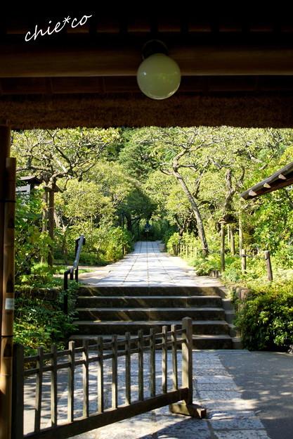 北鎌倉-382