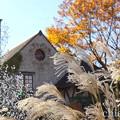 写真: 箱根-569