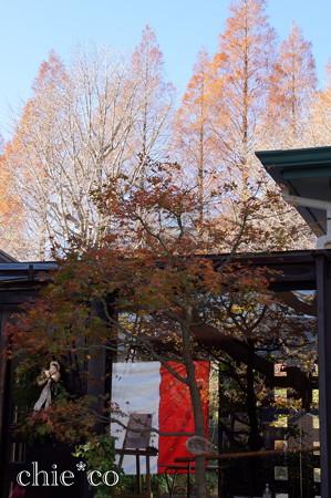 山手イタリア山庭園-255