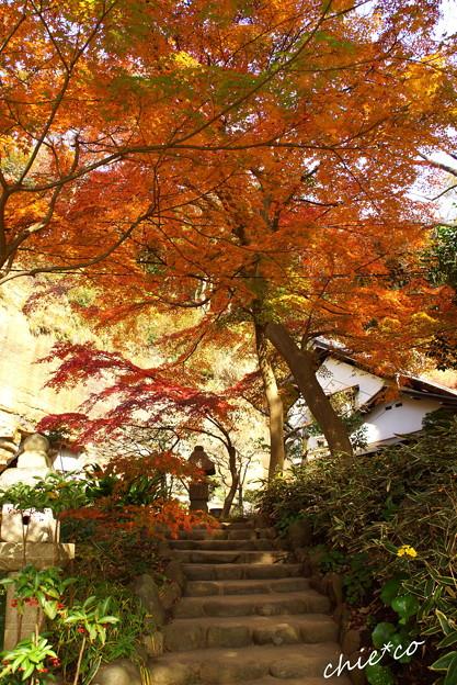 北鎌倉-309