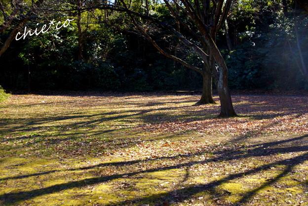 久良岐公園-113