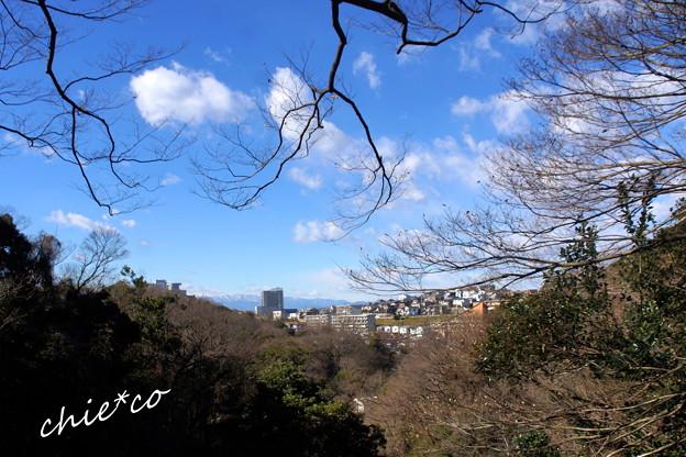 久良岐公園-136