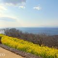 写真: 吾妻山公園-260