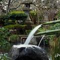 写真: 長谷寺-210