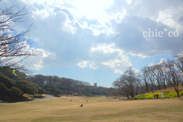 写真: 横浜根岸森林公園-131