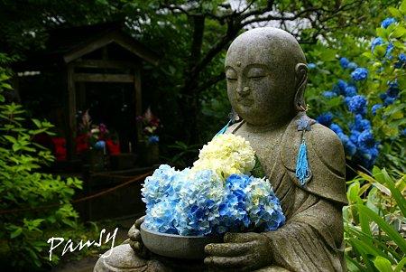 花想い地蔵さま・・明月院 blue・・2