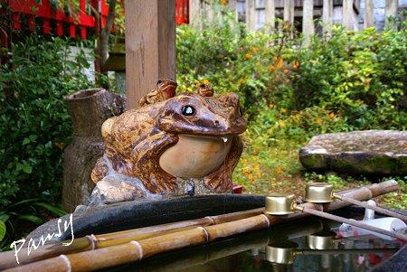 蛙の社・・