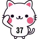 37cat