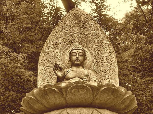 釈迦如来(仏陀)・・・。