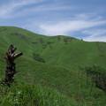 写真: 夏山散策