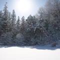 2017年初雪景色