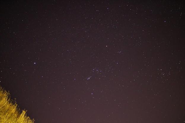 写真: 冬の夜空