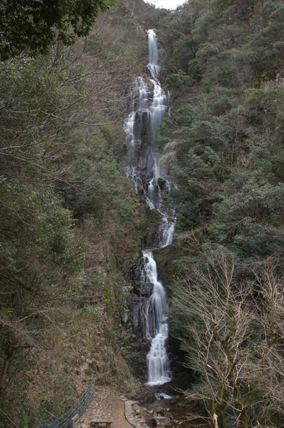 早春の常清滝