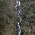 Photos: 早春の常清滝