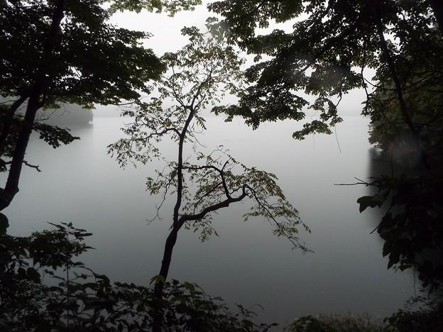 1610010654早朝散策青木湖