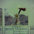 Photos: 酈懸梅A6-086 1703040006