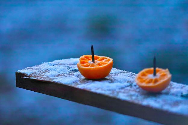 今朝の雪!
