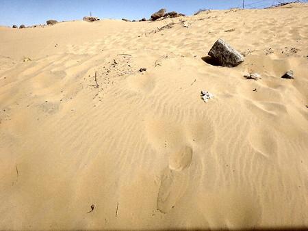 170214-22砂採取