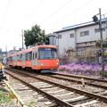 写真: 世田谷線