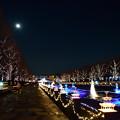 月夜のイルミ