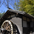 竹林と水車小屋