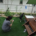 Photos: wan 3670