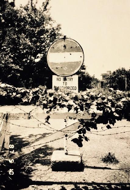 根岸森林公園1987年