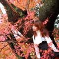 紅葉の妖精