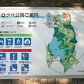 ロクハ公園1-1