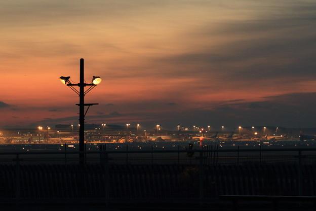 写真: 夜明け前の成田空港