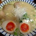 軍鶏塩白湯ラーメン・細麺@美幸・那須塩原市