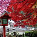 Photos: 出流山満願寺の紅葉