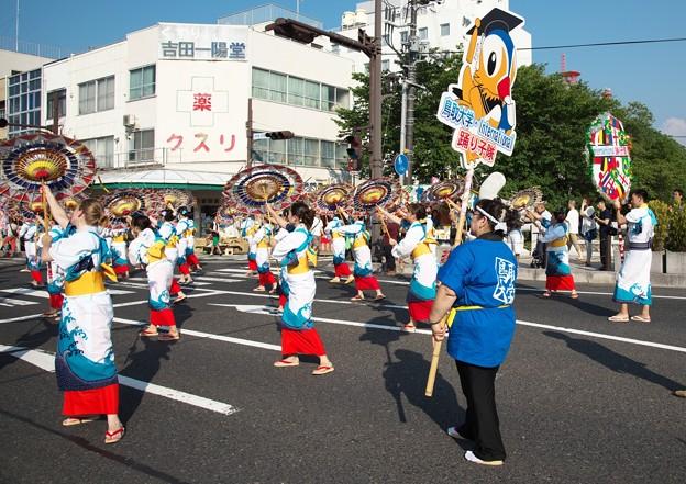 鳥取しゃんしゃん祭(1)H28,8,14
