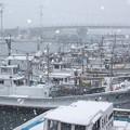 粉雪舞う港(2)H29,1,14