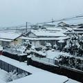 今朝の雪 H29,2,11